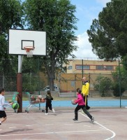 diverbasket2.0-01