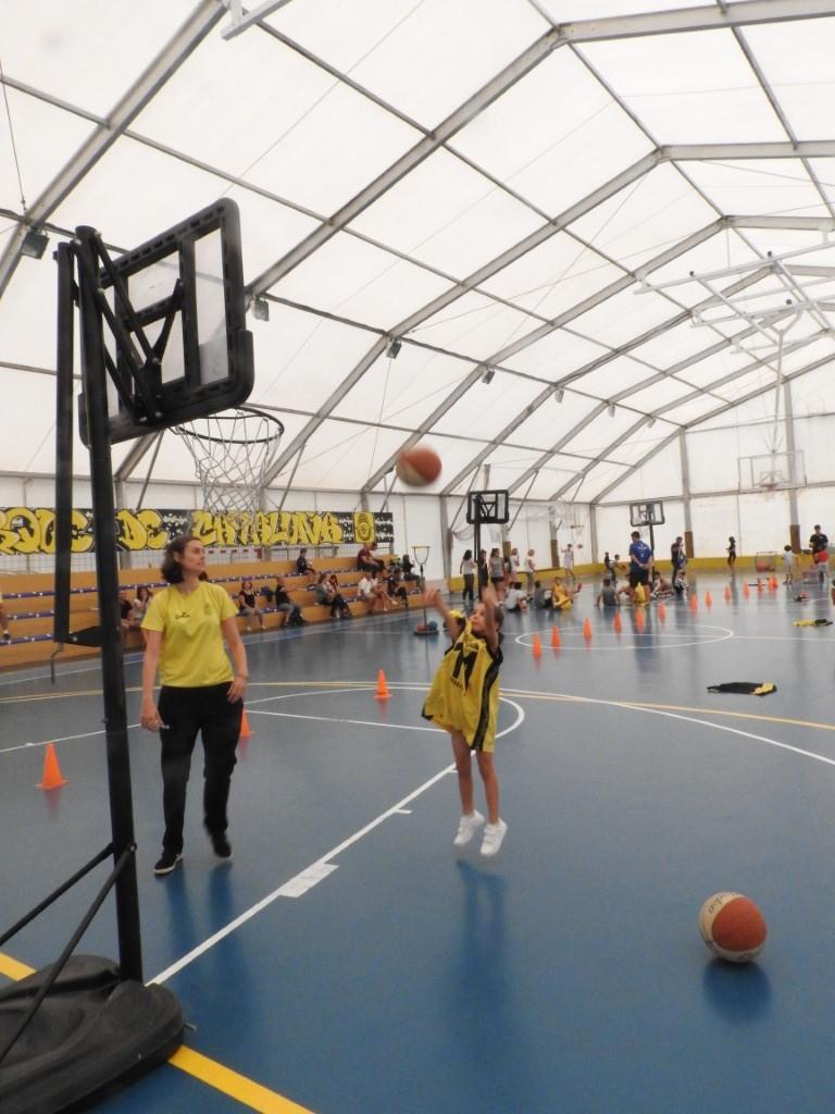 DiverBasket2018_14